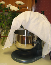 Tea Towel covering dough in the mixer while it's having its 30-minute 'rest'.